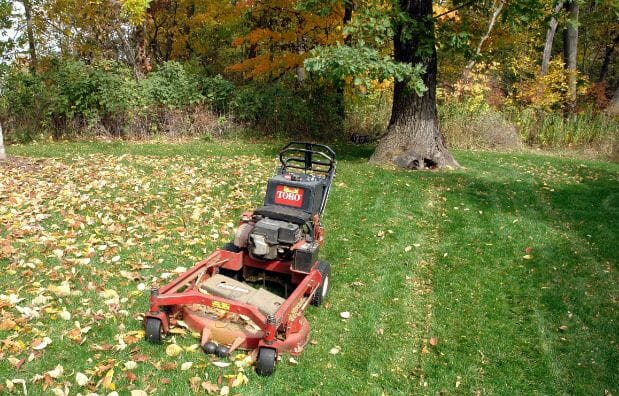 Frequently Asked Questions About Mulching Mowers
