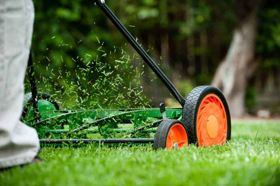 How Does Mowing Help My Grass Spread