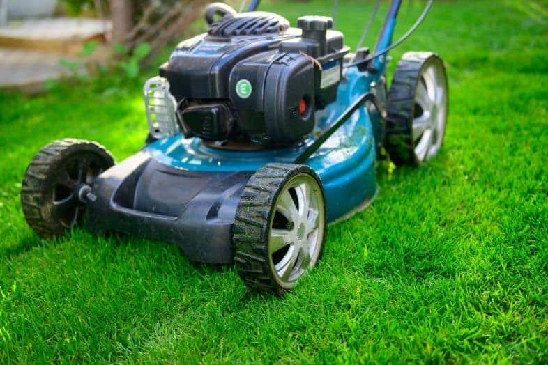Is It Better To Buy a Self-Propelled Or a Push Lawn Mower 2