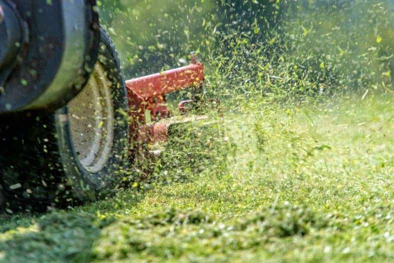(image of a lawn mower mulching grass clippings)
