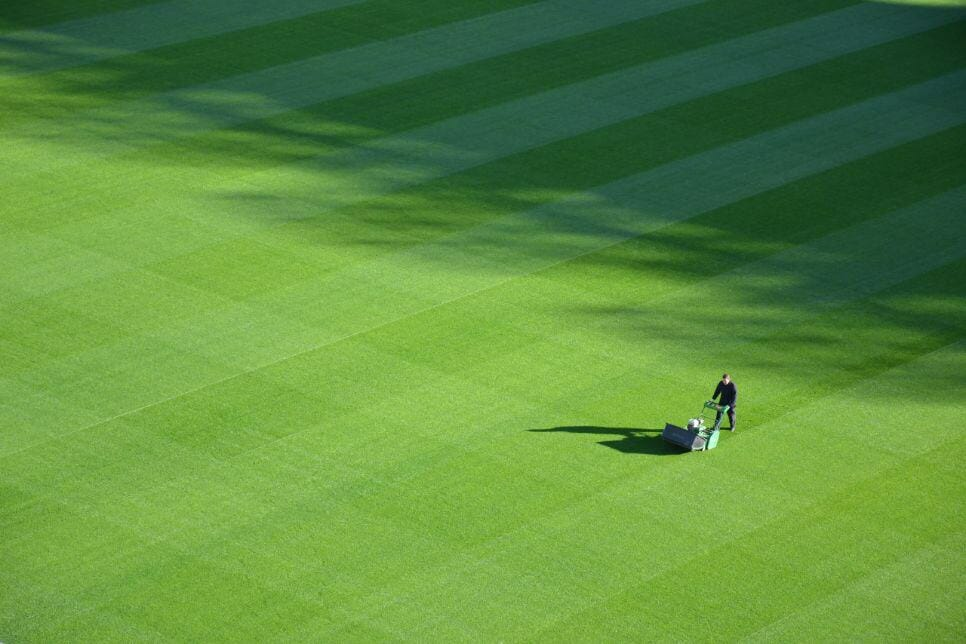 (image of a neat, green lawn)