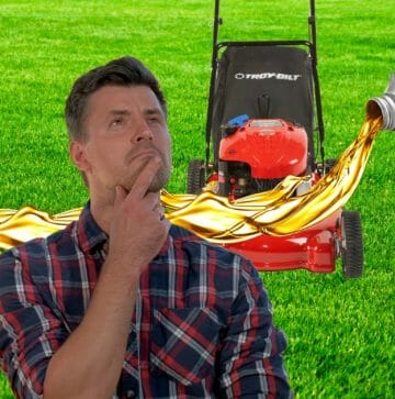 How Often To Change The Oil In a Lawnmower