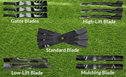 Types of Blade